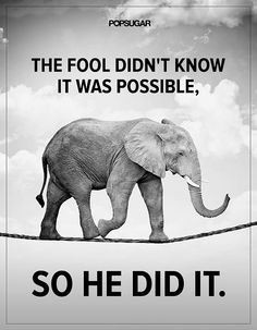 """Anything Is Possible: Quote: """"The fool didn't know it was possible, so he did it."""" Lesson to learn: Don't be bound by limits you impose on yourself. Anything is possible."""