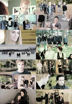 from twilight to breaking dawn part 2 Carlisle, Jasper, Alice, Rosalie, Edward, Esme, Emmett.