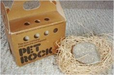 70s Funky Fads: Pet Rock