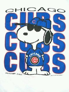 Snoopy's a fan.                                                                                                                                                                                 More
