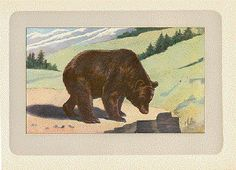 Antique Prints of Bears