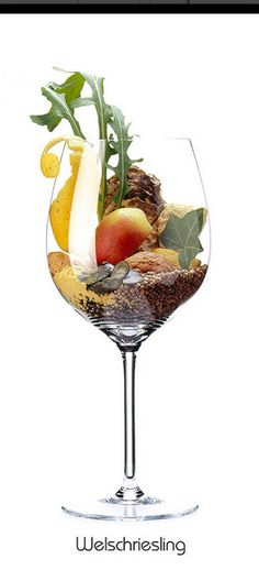 WELSCHRIESLING: Apfel, Zitrone (Schale), Mandel, Kürbis (Kern), Rauke, Sellerie (Knolle), Koriander, Senfmehl, Walnuss, Austernschale (getrocknet)