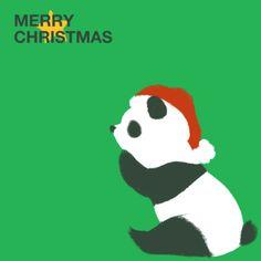 かわいい/可愛い/キュート/CUTE/Cute/クリスマス/Merry Christmas/MERRY CHRISTMAS/メリークリスマス/イベント/冬/赤/クリスマスイブ/X'MAS/X'mas/ミニキャラクター/Winter/winter/WINTER/クレヨン/星/スター/緑/グリーン/パンダ/帽子/座る/動物/アニマル/黒白/白黒/ふわふわ
