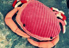 Les parapluies du jeudi: le gros crabe de bretagne