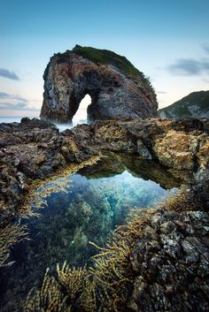 Sea Horse: monumental Rocky beach landscape, Camel Rock, Bermagui, NSW, Australia by Goff Kitsawad