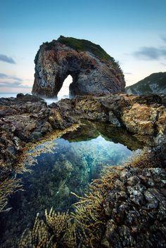 Sea Horse: monumental Rocky beach landscape, Camel Rock, Berguami, Australia by Goff Kitsawad