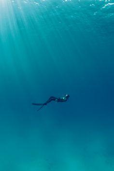 "lightexpo: ""free dive by Kurt Arrigo """