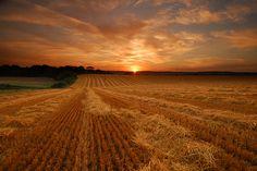 Iowa, where you get the full sunset :)