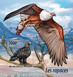 Post stamp Niger NIG 15206 bBirds of Prey (Aquila chrysaetos)