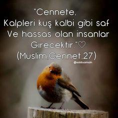 @kalbidualar 💕👈 Sevdigin bir kisiyi etiketle ❤ . 💙✔💙✔💙✔💙✔💙✔ . #şiir #edebiyat #hayat #insan #güven #sevgi #saygı #asklayasa #kitapsevgisi… Allah Islam, Islam Muslim, Mecca Wallpaper, Iftar, Alhamdulillah, Islamic Quotes, Cool Words, Pray, Spirituality