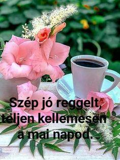 Coffee, Plants, Humor, Kaffee, Humour, Cup Of Coffee, Funny Photos, Plant, Funny Humor