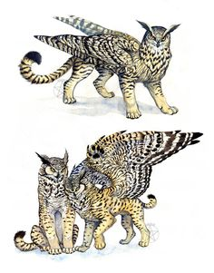 Owl-Griffins... Now, how to create your own unique creatures for your story....?? Just by combining fantasy and real creatures to find your own?