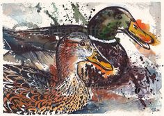 Two ducks, watercolour and fineliner. (mixed media, expressive, art, artwork, painting, malard, water, nature, wildlife)