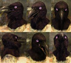 Purple eyed raven mask by Crystumes cosplay costume LARP LRP equipment gear magic item | Create your own roleplaying game material w/ RPG Bard: www.rpgbard.com | Writing inspiration for Dungeons and Dragons DND D&D Pathfinder PFRPG Warhammer 40k Star Wars Shadowrun Call of Cthulhu Lord of the Rings LoTR + d20 fantasy science fiction scifi horror design | Not Trusty Sword art: click artwork for source