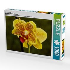 Ein Motiv aus dem Kalender Blütenzauber Orchideen 1000 Te... https://www.amazon.de/dp/B01LNQT9JM/ref=cm_sw_r_pi_dp_x_oYP3xbGVRFYNE
