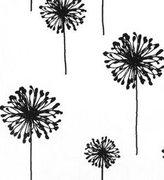 Dandelion White / Black | Online Discount Drapery Fabrics and Upholstery Fabric Superstore!