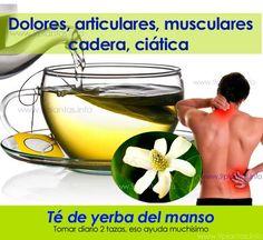 Dolores, articulares, musculares, cadera, ciática: Tomar diario 2 tazas de té de yerba del manso nos ayudamos con el dolor, Acá el informe de la planta; yerba manso:
