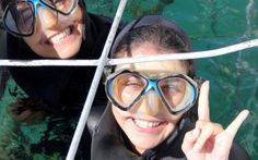Shark-cage-diving with Marine Dynamics Shark Cage, Kelp Forest, Cape Town, Scuba Diving, Trips, Travel, Snorkeling, Traveling, Viajes