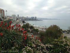 Vista de Playa Caleta Abarca Viña del Mar Chile