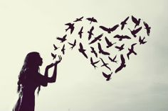 Blackbird singing in the dead of night.  Take these broken wings and learn to…