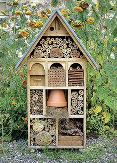 domeček pro hmyz - Hledat Googlem