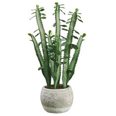 "20"" Cactus Artificial Plant w/Terra Cotta Pot -Green (pack of 4) - LQS450-GR"