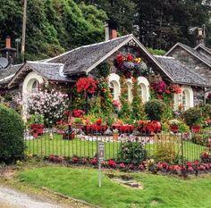 Egy 75 éves dédnagyapa kertje, aminek a csodájára járnak az emberek! második…