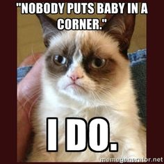 Haha, nice one grumpy cat :-) grumpy cat memes - Cat memes - kitty cat humor funny joke gato chat captions feline laugh photo Grumpy Cat Quotes, Funny Grumpy Cat Memes, Funny Animal Jokes, Cute Funny Animals, Funny Animal Pictures, Animal Memes, Funny Cute, Cute Cats, Funny Memes