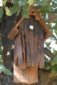Bat House