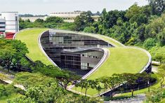 An art school can be a work of art in itself. This sloping green roof at the Nanyang Technological University School in Singapore captured our attention with its forward-thinking beauty. Singapore School, Roofing Options, Roofing Materials, Residential Roofing, Roof Styles, Green Architecture, Singapore Architecture, School Building, Roof Repair