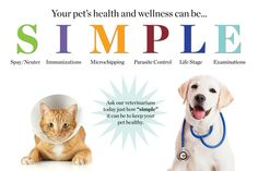 We support Michigan Humane Society here are some wellness tips for your pets. Veterinary Services, Veterinary Care, Pet Health, Health And Wellness, Wellness Tips, Rochester Hills Michigan, Healthy Pets, Pet Care Tips, Happy Animals