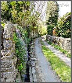 """Previous pinner said, """"An English country lane."""" - Actually, this could be anywhere in the UK."""