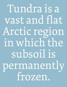 FF Tundra by Ludwig Übele