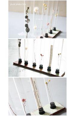 100 円リメイク雑貨です ^^ セリアの試験管を使って ... Liatorp, Dry Plants, Plant Art, Nature Crafts, Baby Decor, Dried Flowers, Diy Art, Flower Art, Diy And Crafts