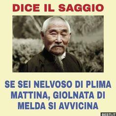 Dice il saggio Italian Memes, Corbyn Besson, Sarcasm Humor, Cringe, Haha, Comedy, Harry Potter, Funny Memes, My Love