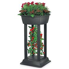 Upside Down Patio Garden  $79.95  Grow Tomatoes U0027upside Downu0027 From Your  Deck Or Patio Love To Grow Tomatoes, But No Yard To Create A Garden? You Dou2026