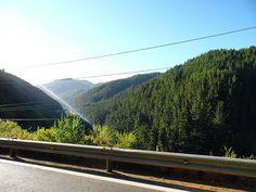 On instagram by photosnatural100 #landscape #contratahotel (o) http://ift.tt/1SaNuJf hace lo que se puede... Desfe un auto en movimiento camino cauquenes #green #blue #cerros #pino #bosque #arbol #tree  #naturelovers  #naturelover  #nature_perfection  #nature_lovers  #natural #naturaleza  #photooftheday  #pictureoftheday  #picture  #pic #photo #fotos #cordillera  #chile_360  #chile #chile_shots #travel #traveler #paisajes #postal#cauquenes #suramerica  #like4like