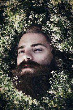 No Words, Just Beard | beardrevered