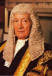 8 best lawyer wigs