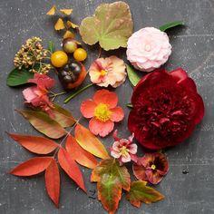 Autumn Flower Centerpiece by Kiana of Tulipina