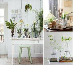 Saca tu lado botánico y añade plantas y flores a la #decoracion #natural