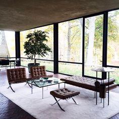 #pjglasshouse #interior | cacahuete_sr | VSCO Grid™