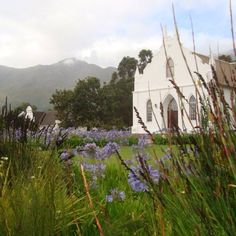 Franschhoek - South Africa - Loved the Dutch colonial architecture.