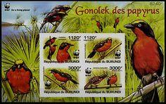 BURUNDI flora | Details about FAUNA 2011 BURUNDI WWF BIRDS SOUVENIR SHEET IMPERF MNH ...
