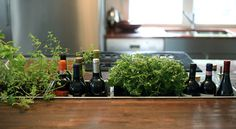 """""""gutter"""" in the middle of kitchen island - perfect place to put pots of herbs"""