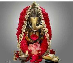 Ganesh Pic, Shri Ganesh Images, Sri Ganesh, Ganesh Lord, Ganesha Pictures, Radha Krishna Images, Lord Shiva, Ganesha Rangoli, Clay Ganesha