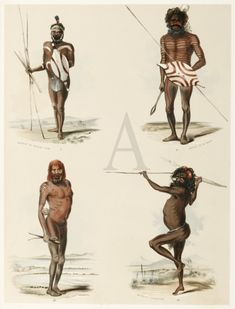 The largest and most impressive series of portraits made of the South Australian Aboriginals during the colonial period. Australian Aboriginal History, Australian Art, Native American History, Aboriginal Culture, Aboriginal People, Black History, Art History, Australian Aboriginals, African Tribes