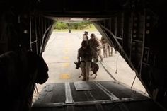 See Fascinating Video of Military Dog Jumping From Helicopter | WOOFipedia by The American Kennel Club
