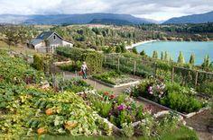Annabel Langbein's Wanaka garden on a spring day – heaven! Potager Garden, Garden Pests, Garden Landscaping, Lakeside Garden, Home Vegetable Garden, Small Space Gardening, Garden Structures, Edible Garden, Garden Gates