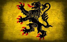 vlaamse leeuw wallpaper - Google zoeken